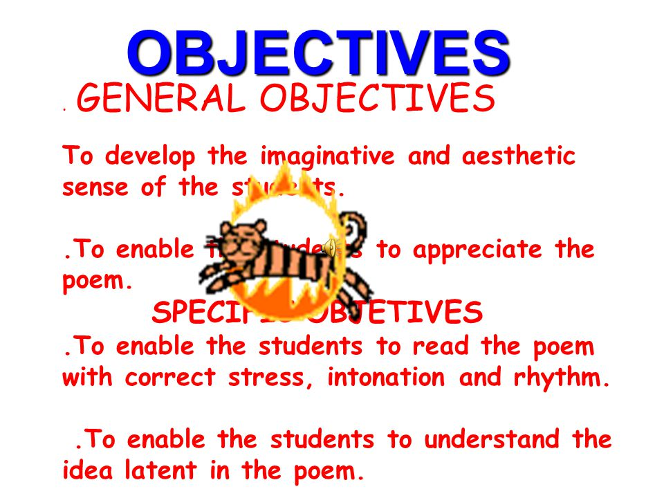 OBJECTIVES SPECIFIC OBJETIVES