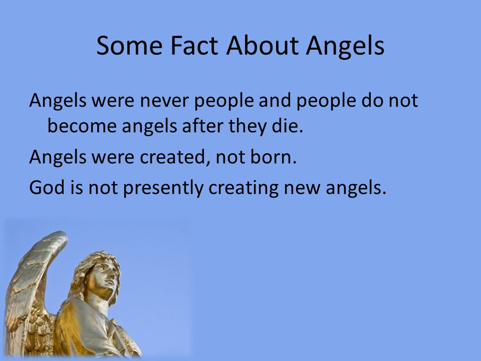 Some Fact About Angels