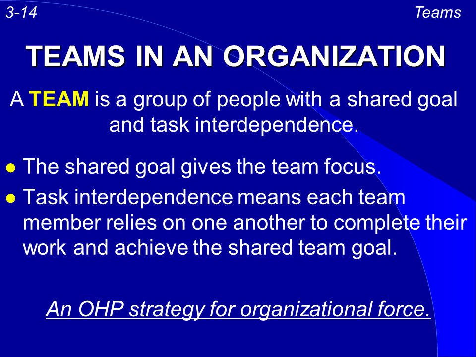 TEAMS IN AN ORGANIZATION