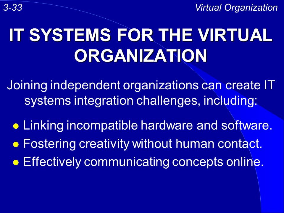 IT SYSTEMS FOR THE VIRTUAL ORGANIZATION