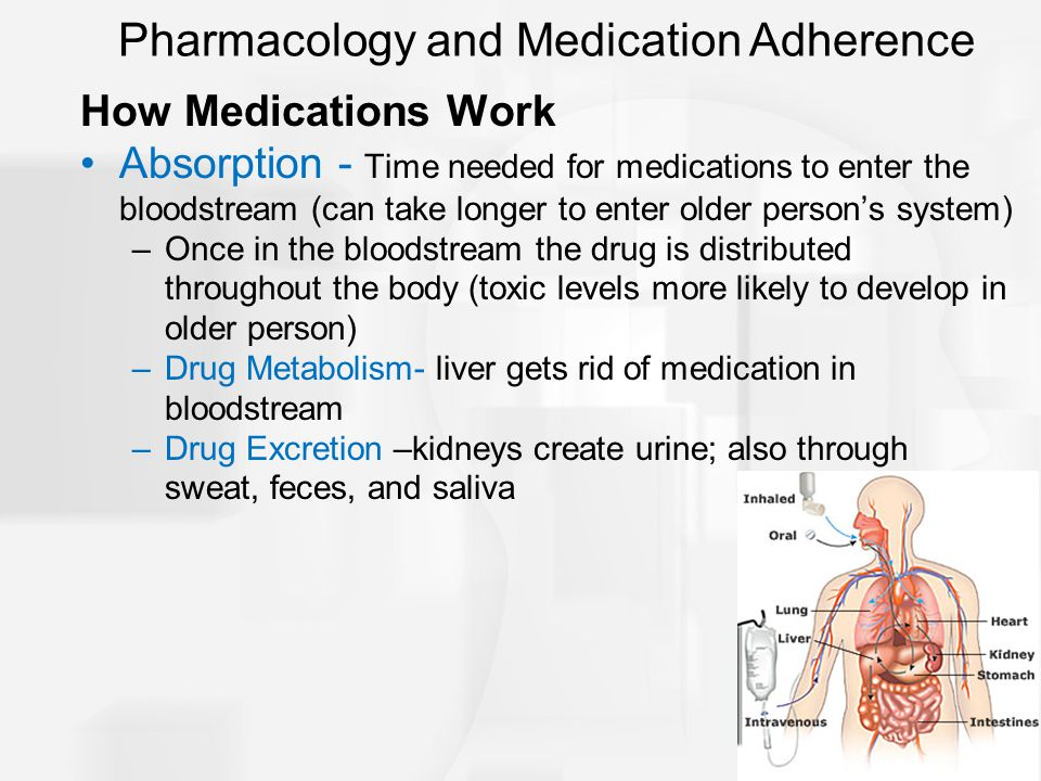 Pharmacology and Medication Adherence