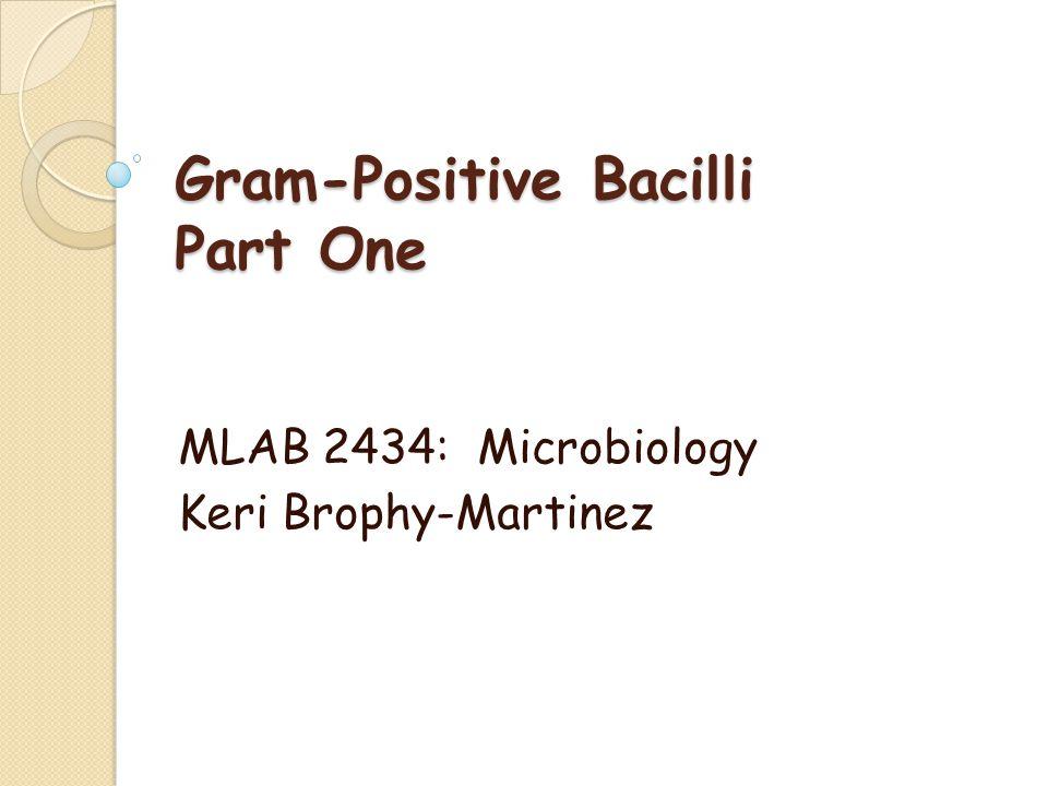 Gram-Positive Bacilli Part One