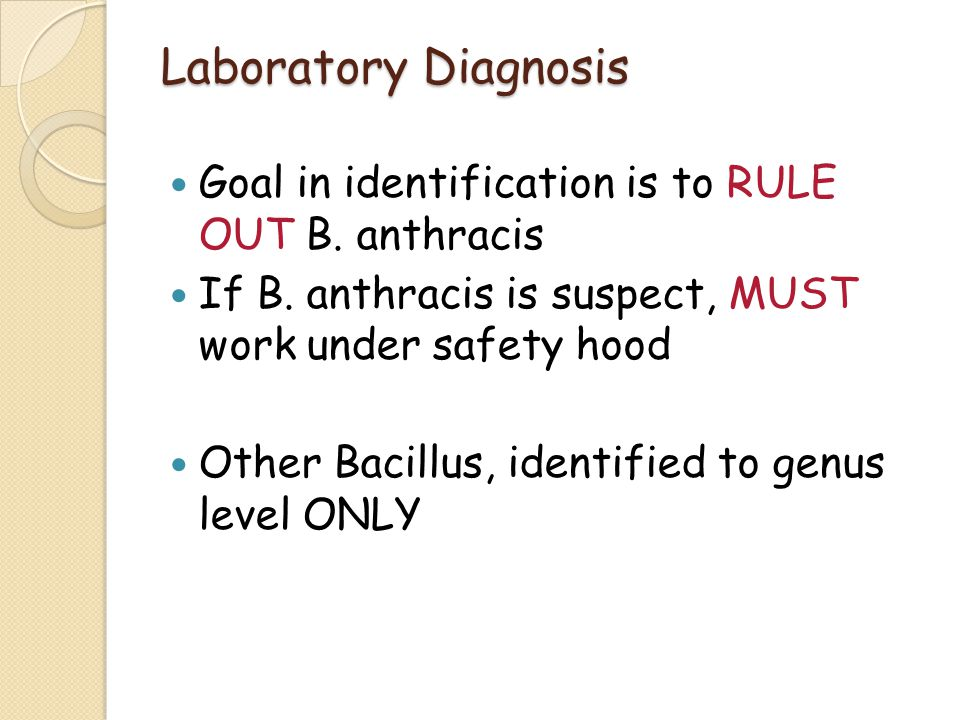 Laboratory Diagnosis Goal in identification is to RULE OUT B. anthracis. If B. anthracis is suspect, MUST work under safety hood.