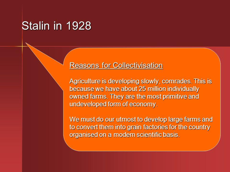 Stalin in 1928