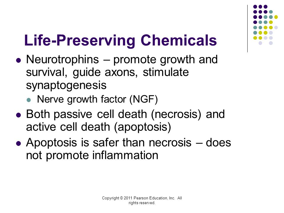 Life-Preserving Chemicals