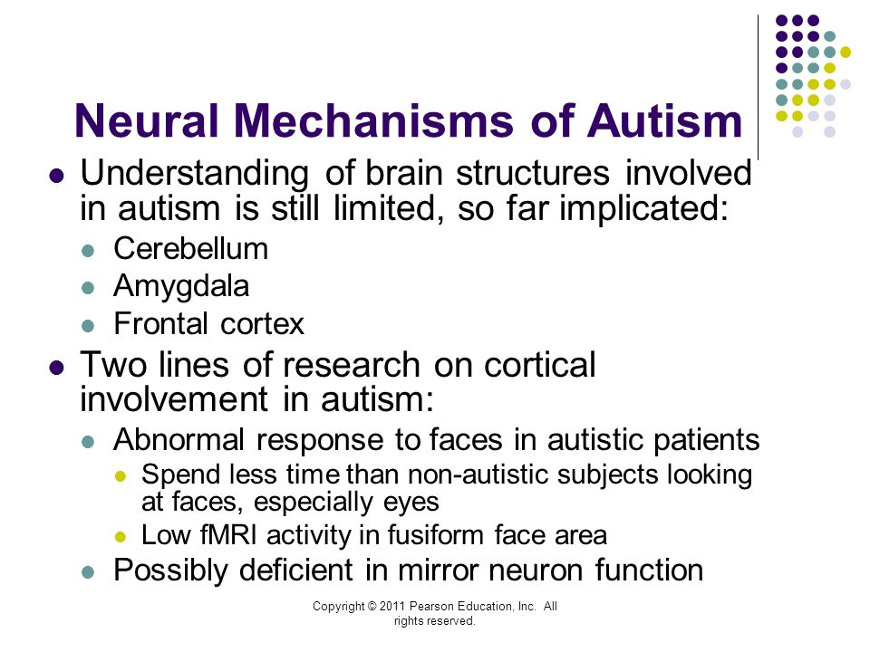 Neural Mechanisms of Autism