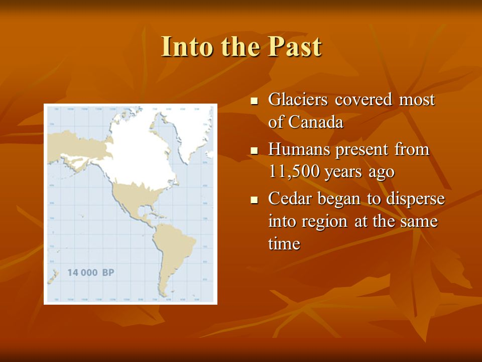 Into the Past Glaciers covered most of Canada
