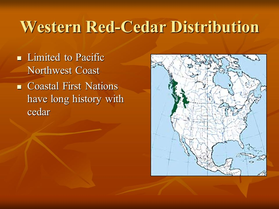 Western Red-Cedar Distribution