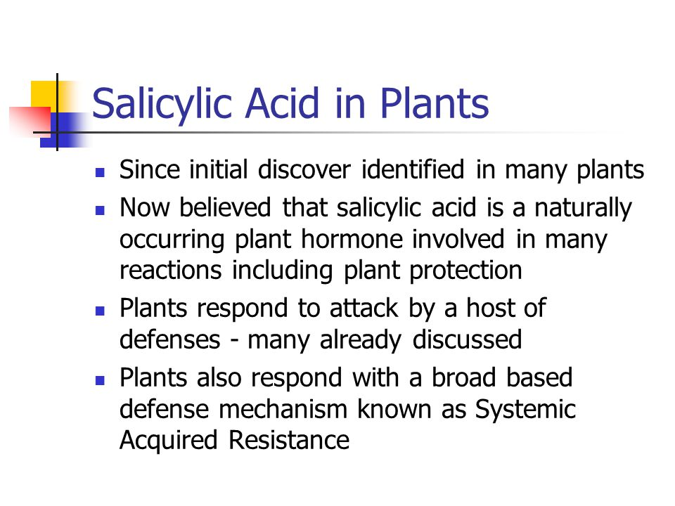 Salicylic Acid in Plants