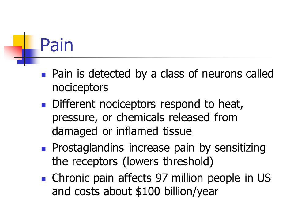 Pain Pain is detected by a class of neurons called nociceptors
