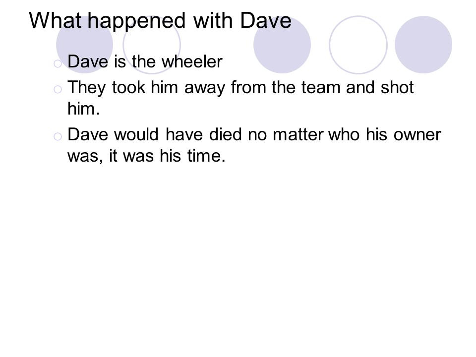 What happened with Dave