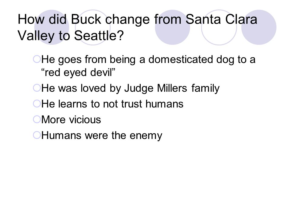How did Buck change from Santa Clara Valley to Seattle