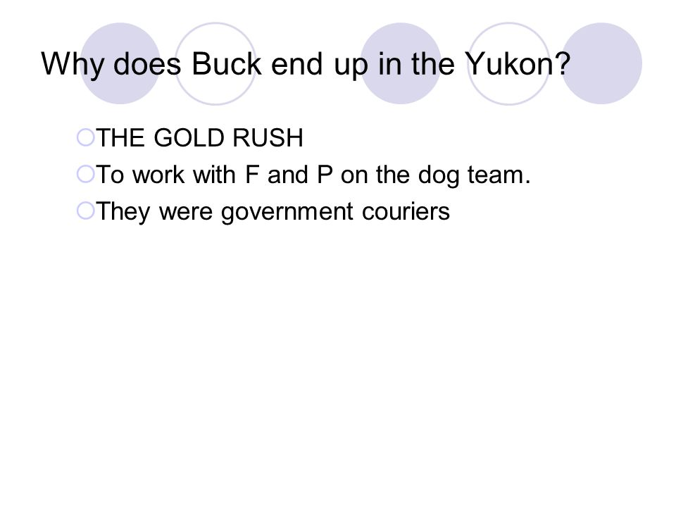 Why does Buck end up in the Yukon