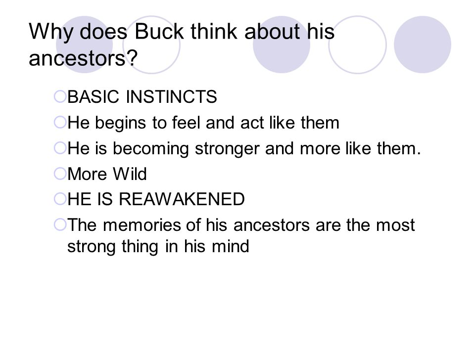 Why does Buck think about his ancestors