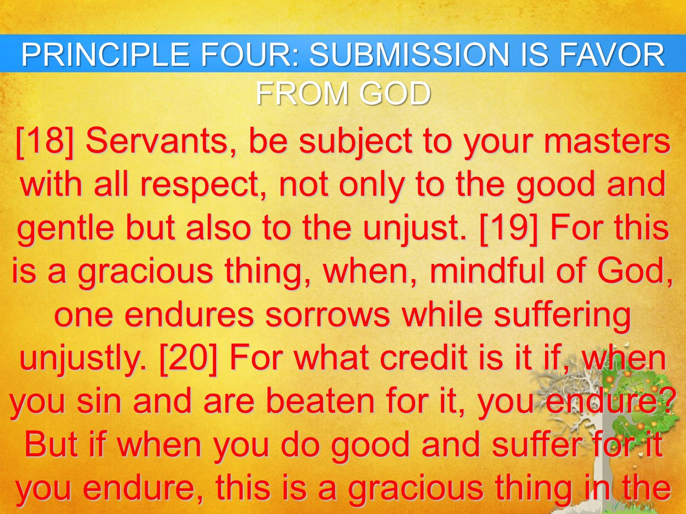 PRINCIPLE FOUR: SUBMISSION IS FAVOR FROM GOD