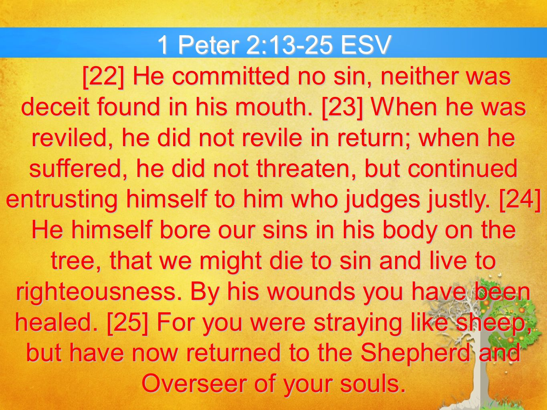 1 Peter 2:13-25 ESV