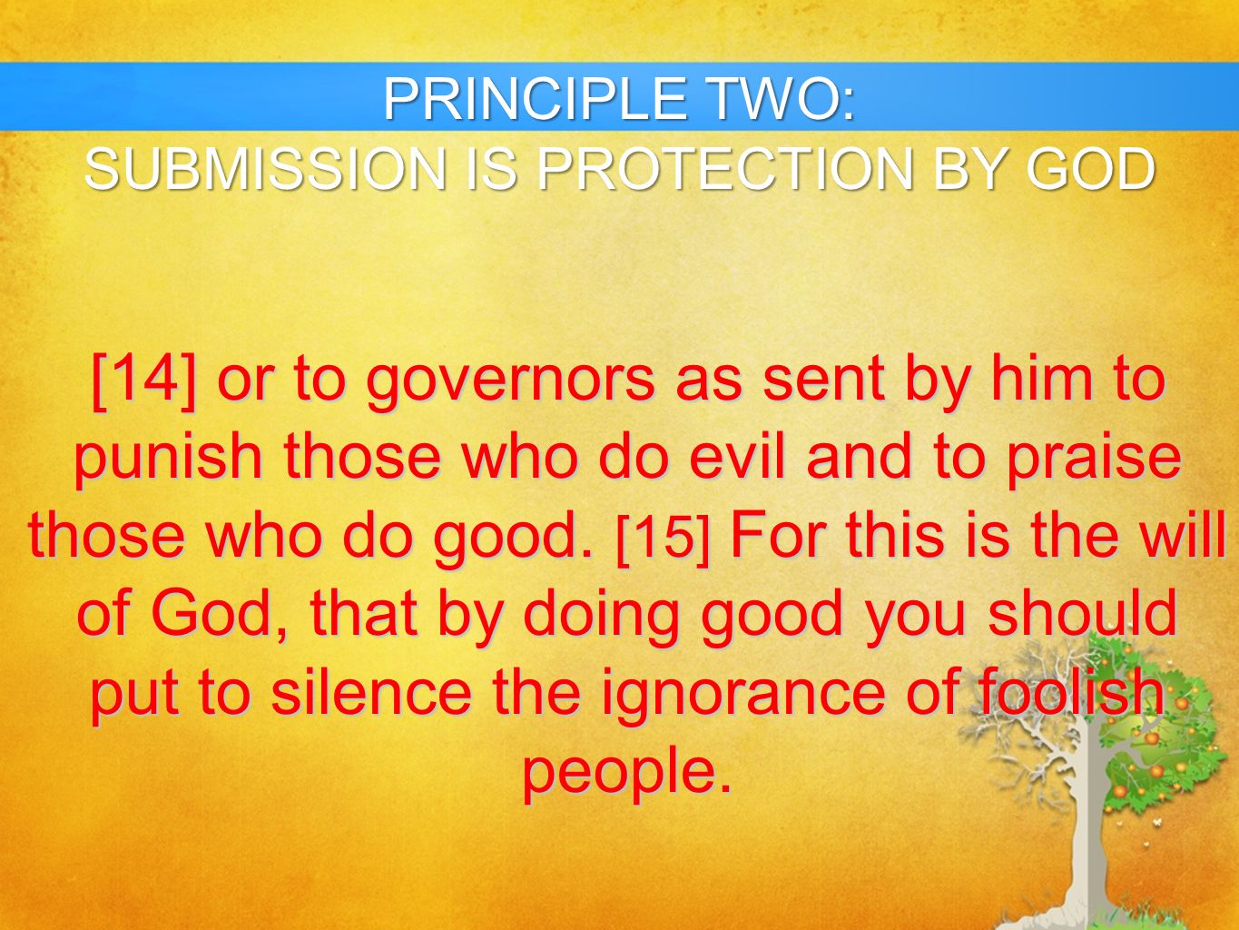 SUBMISSION IS PROTECTION BY GOD