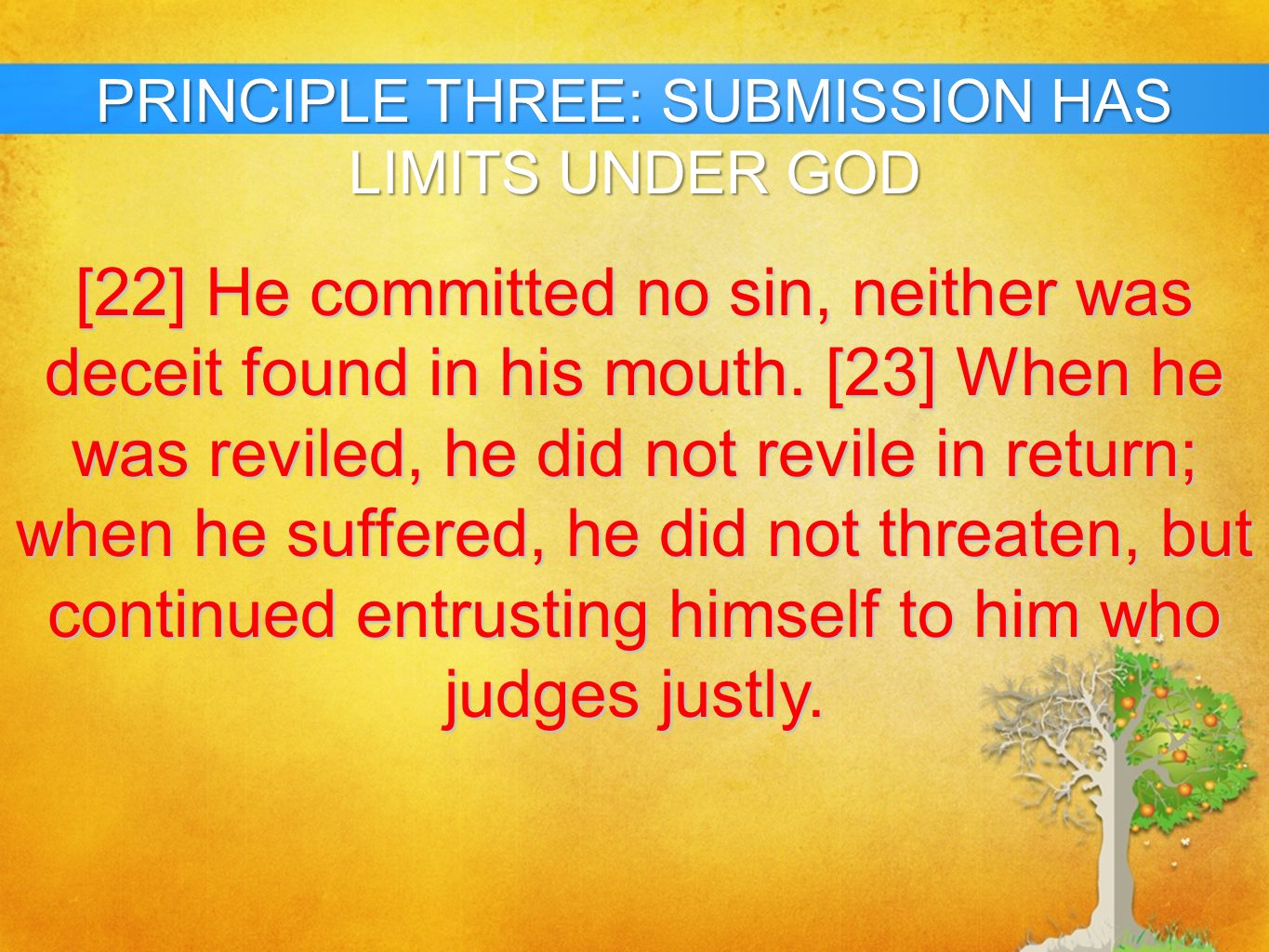 PRINCIPLE THREE: SUBMISSION HAS LIMITS UNDER GOD