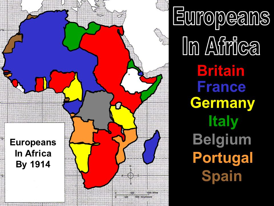 Europeans In Africa Britain France Germany Italy Belgium Portugal