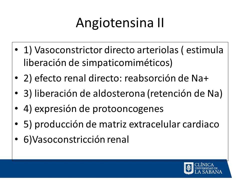 Angiotensina II 1) Vasoconstrictor directo arteriolas ( estimula liberación de simpaticomiméticos) 2) efecto renal directo: reabsorción de Na+