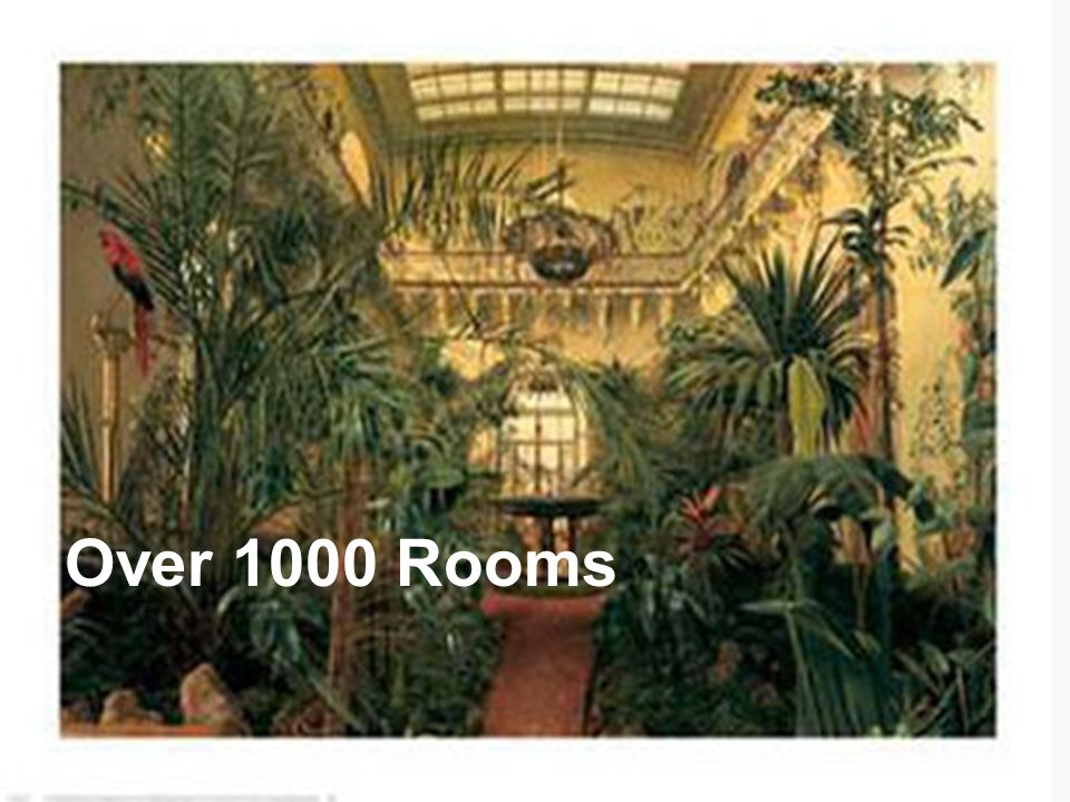 Over 1000 Rooms