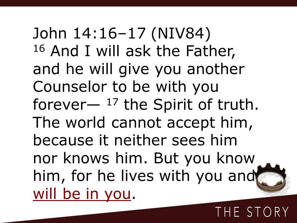 John 14:16–17 (NIV84)