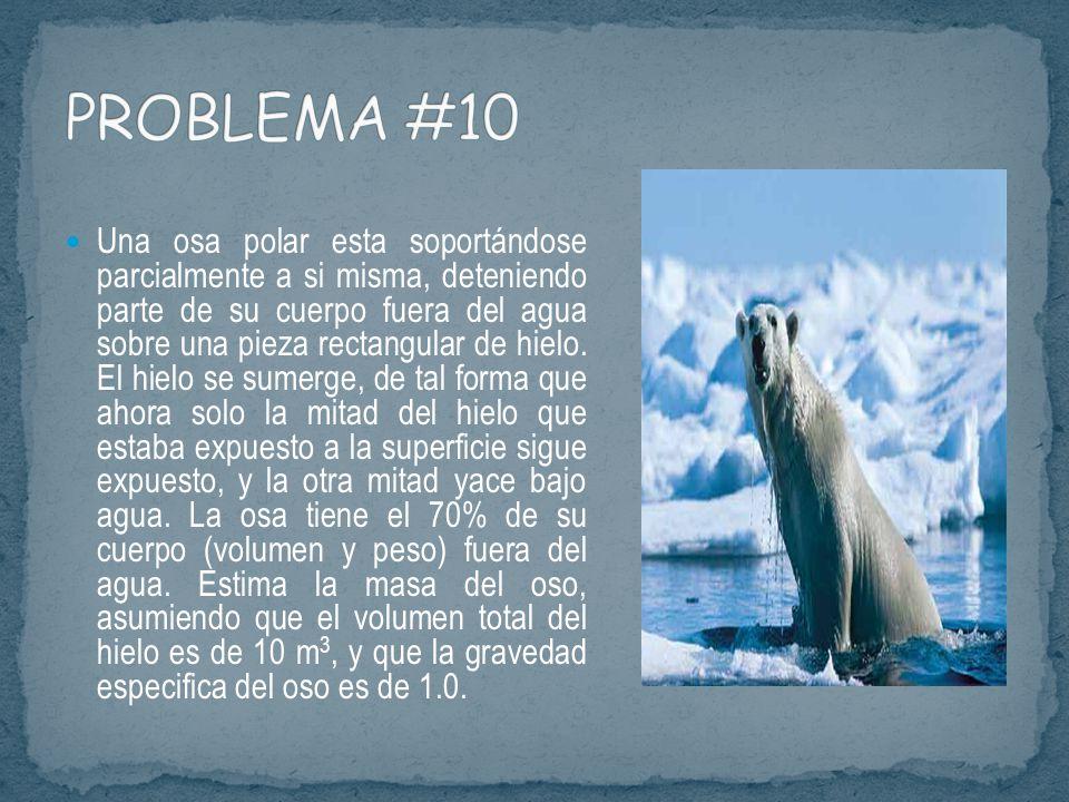 PROBLEMA #10