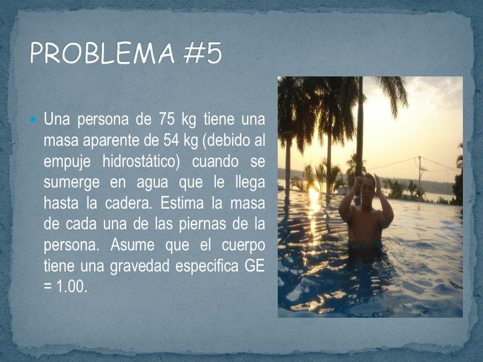 PROBLEMA #5