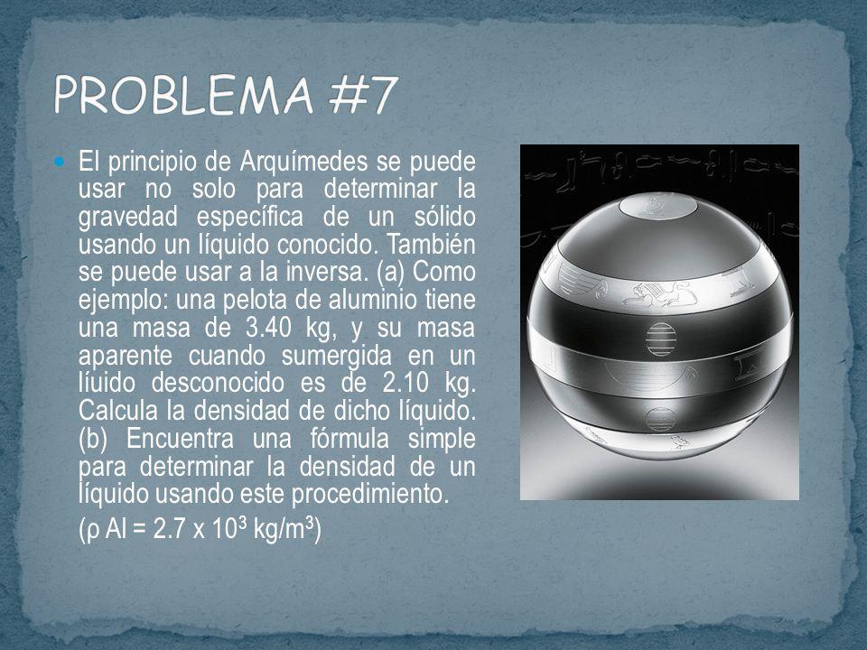 PROBLEMA #7