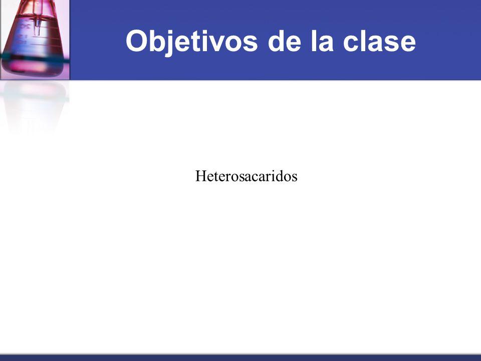 Objetivos de la clase Heterosacaridos