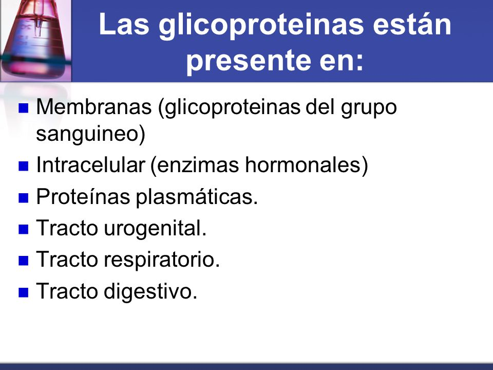 Las glicoproteinas están presente en: