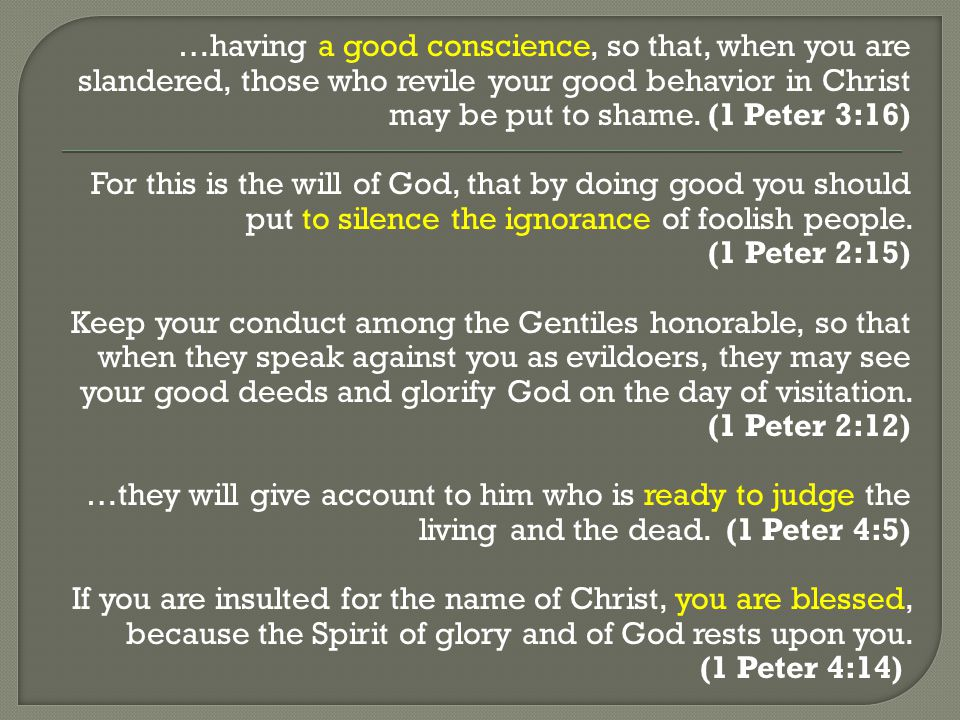 …having a good conscience, so that, when you are slandered, those who revile your good behavior in Christ may be put to shame.