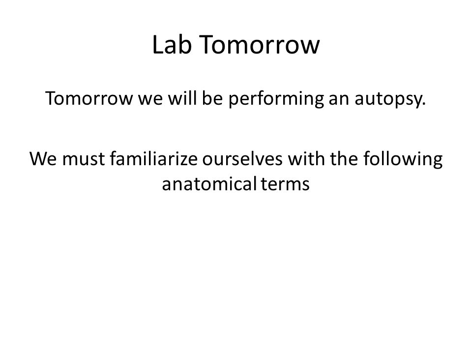 Lab Tomorrow Tomorrow we will be performing an autopsy.