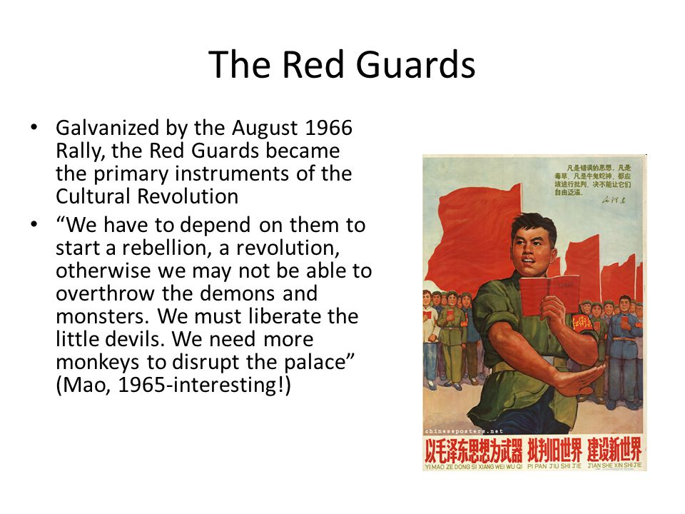 The Red Guards Galvanized by the August 1966 Rally, the Red Guards became the primary instruments of the Cultural Revolution.