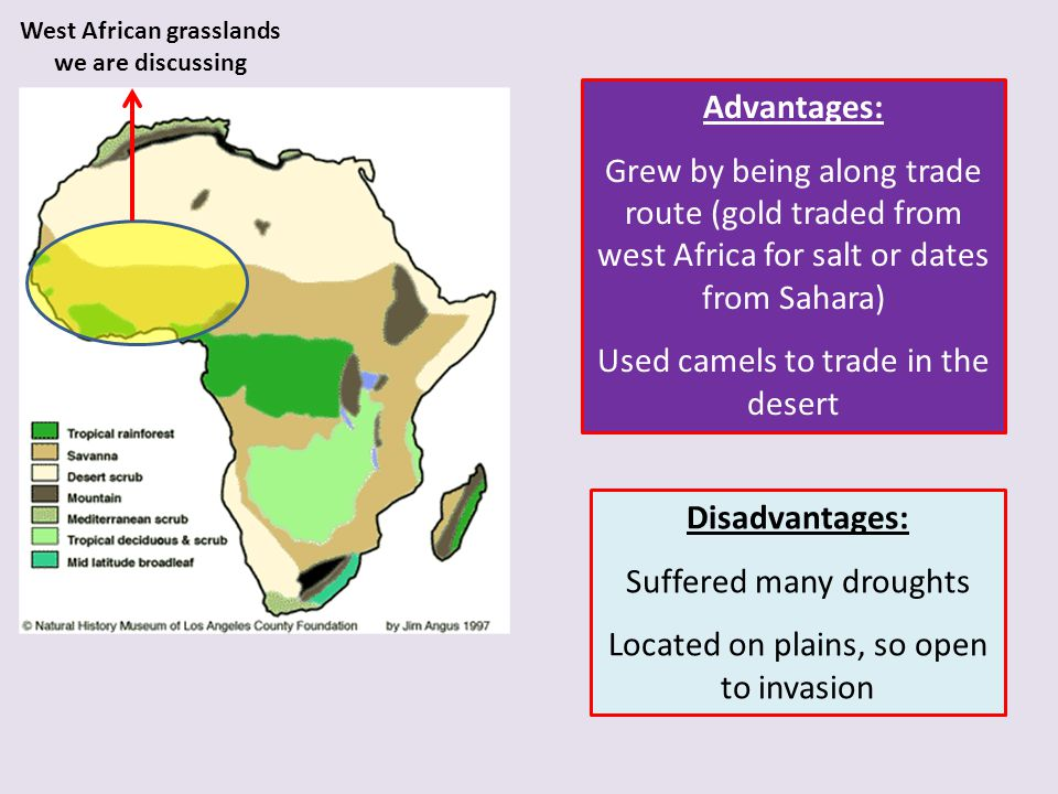 West African grasslands we are discussing