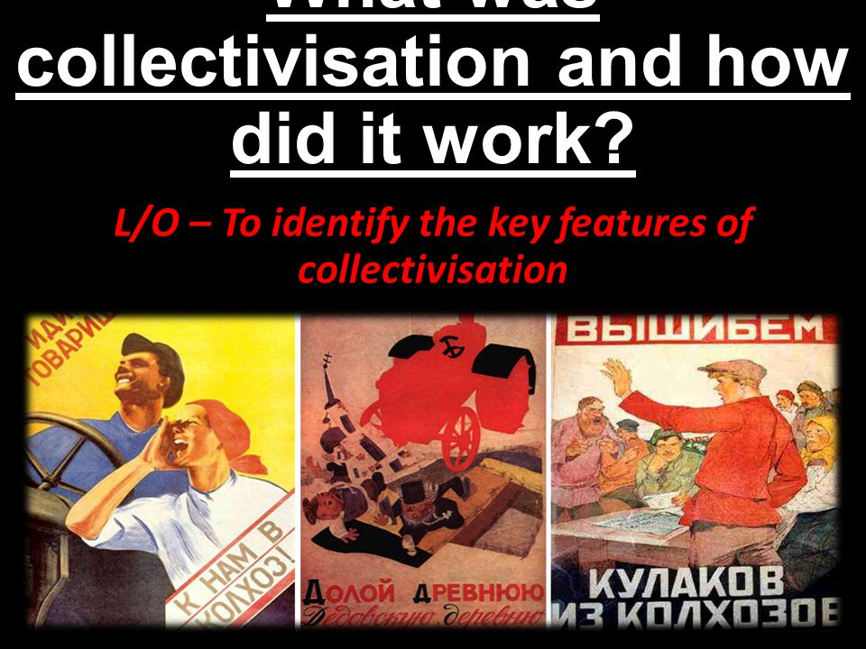 What was collectivisation and how did it work