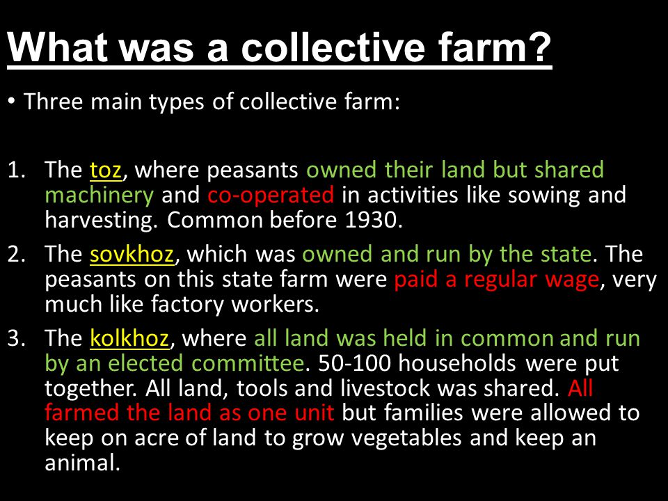 What was a collective farm