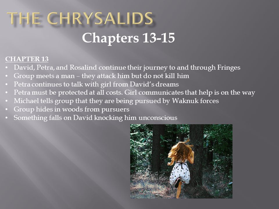 The Chrysalids Chapters 13-15 CHAPTER 13