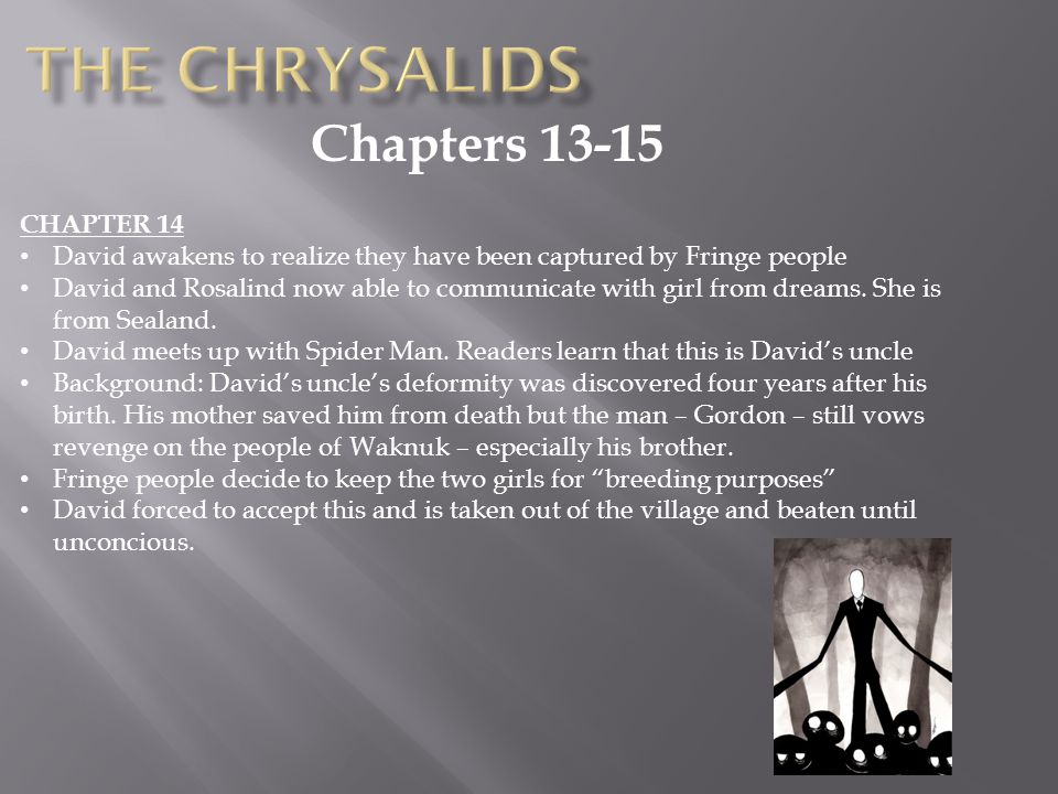 The Chrysalids Chapters 13-15 CHAPTER 14