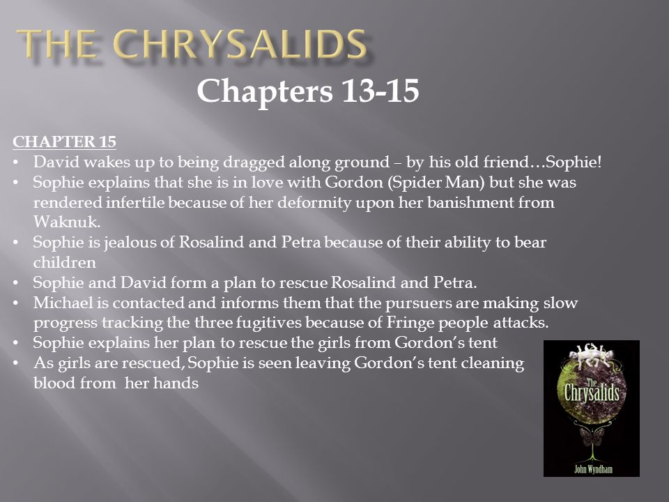 The Chrysalids Chapters 13-15 CHAPTER 15