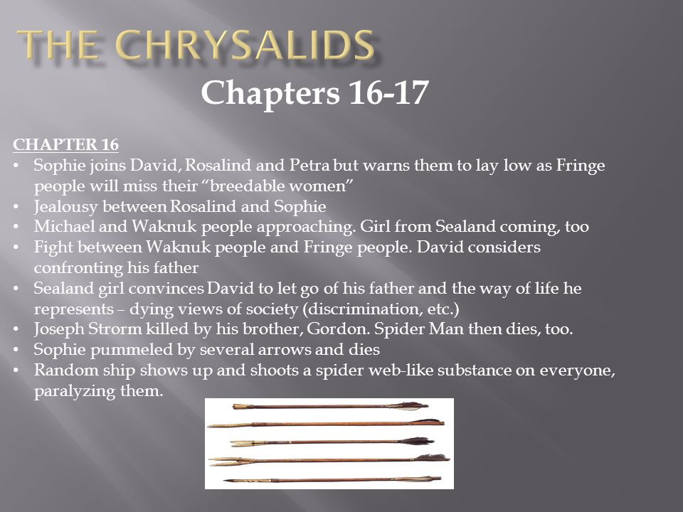 The Chrysalids Chapters 16-17 CHAPTER 16