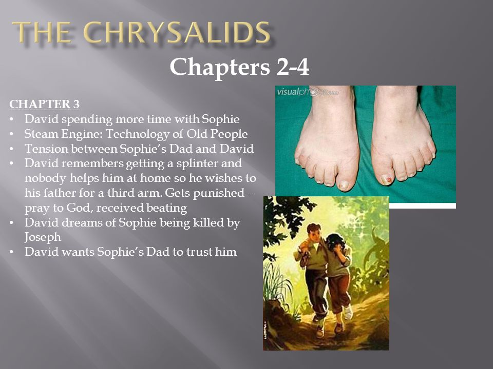 The chrysalids Chapters 2-4 CHAPTER 3