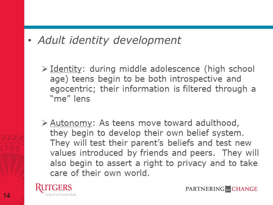 Adult identity development