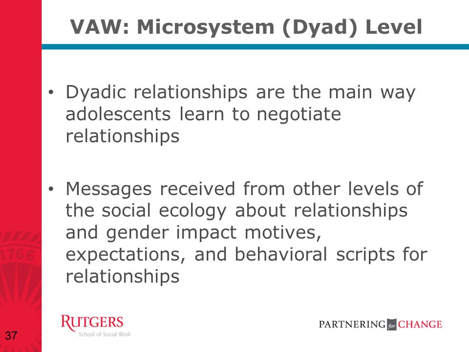 VAW: Microsystem (Dyad) Level