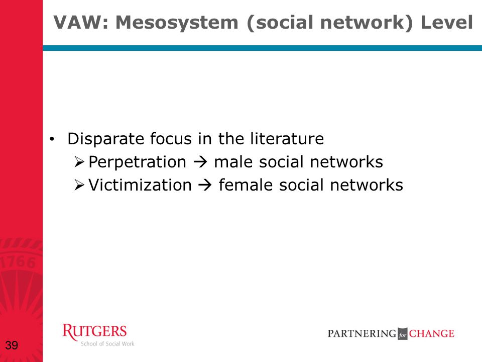 VAW: Mesosystem (social network) Level