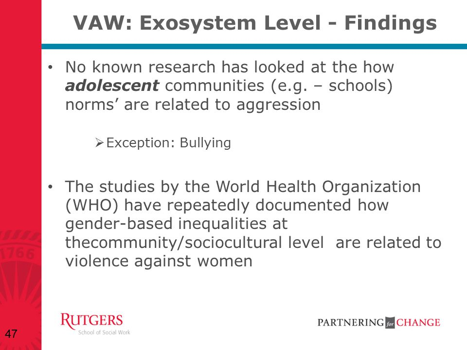 VAW: Exosystem Level - Findings