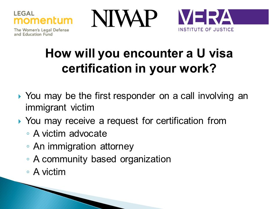 How will you encounter a U visa certification in your work