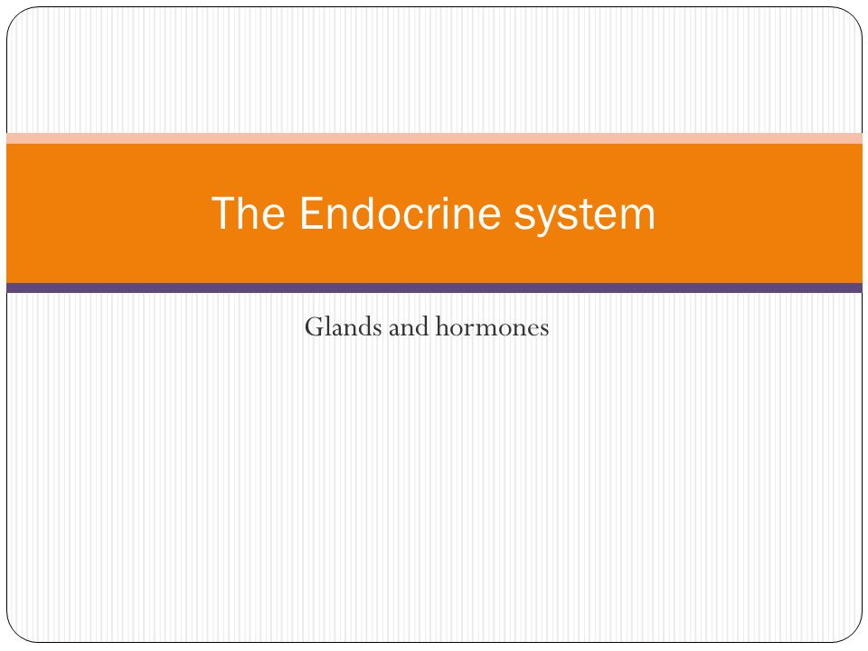 The Endocrine system Glands and hormones