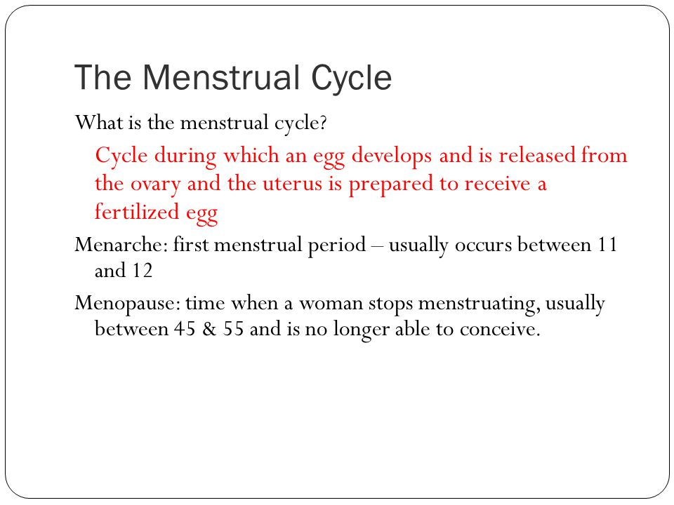 The Menstrual Cycle What is the menstrual cycle