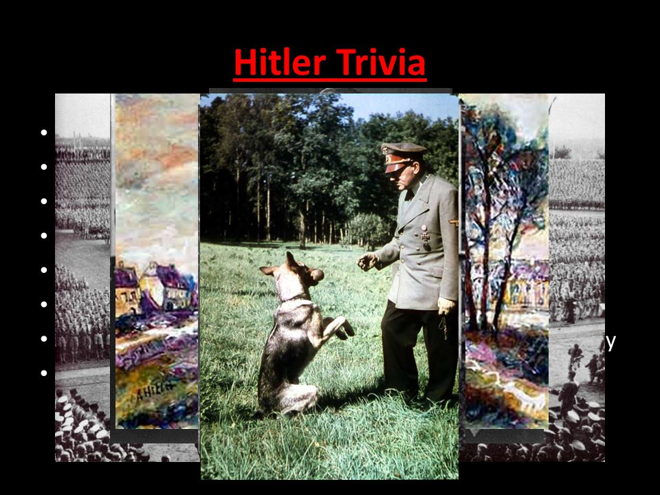 Hitler Trivia Born 1889 He was a vegetarian, and an animal lover